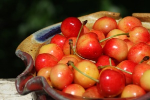 cherries-bowl2-500